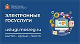 Информационная брошюра «Электронные госуслуги»